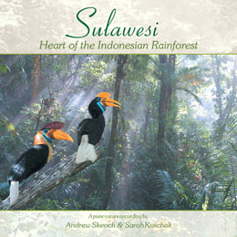 Sulawesi - Heart of the Indonesian Rainforest sound recording
