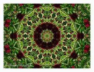 Floral Mandala - Burgundy & Green #2
